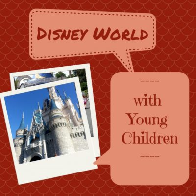 The Best Tips for Disney World with Young Children