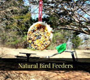 DIY Natural Bird Feeder