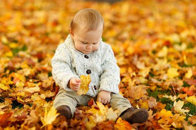 Baby playing in leaves