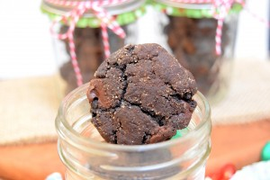 Spicy Double Dark Chocolate Snickerdoodle Cookies