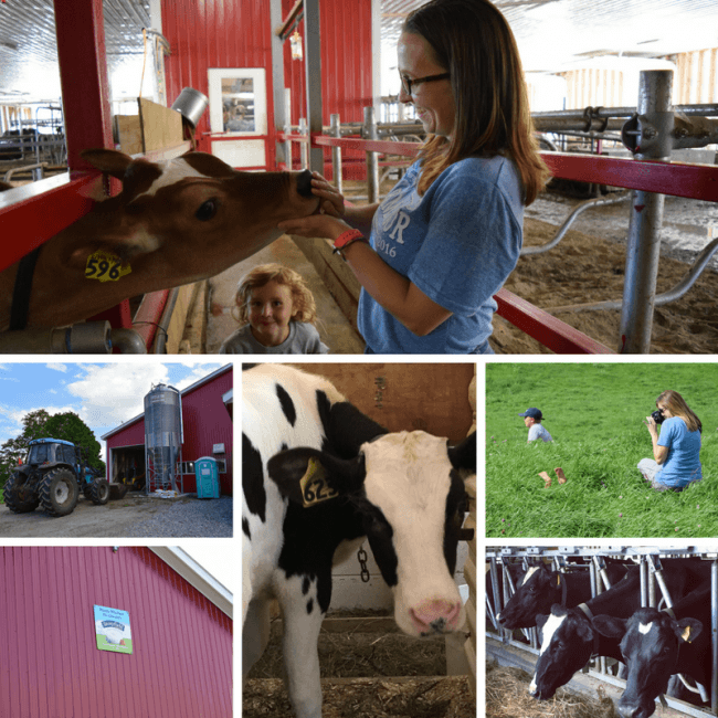 Wonder Why Farm is an organic dairy farm in Vermont. On the Stonyfield Farm Tour, we got to see first hand where our food comes from. It's real food, real people, and more.