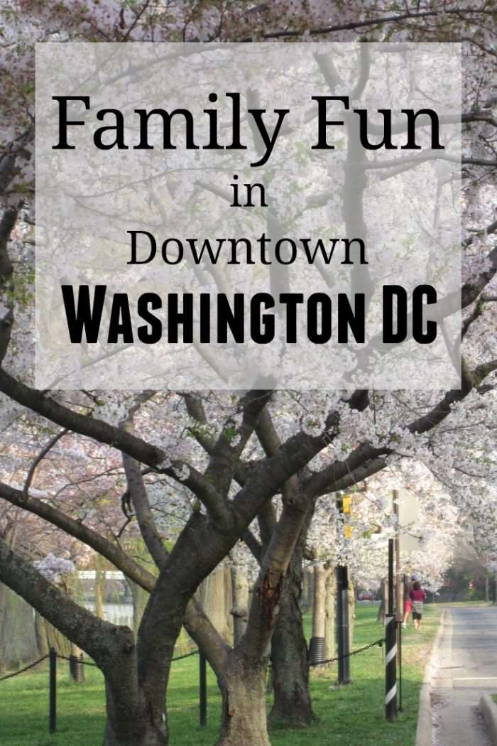 Family Fun in Downtown Washington DC - family travel