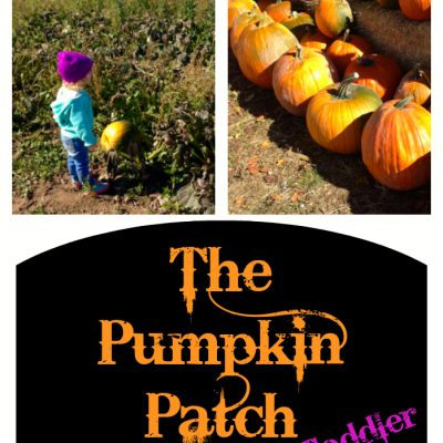 Head to the Pumpkin Patch With a Toddler