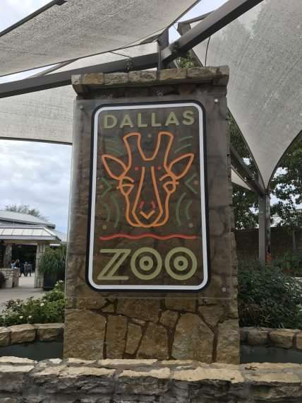 Fun Things to Do in Dallas (Holiday Edition) - These are places you want to visit with the family while in Dallas.