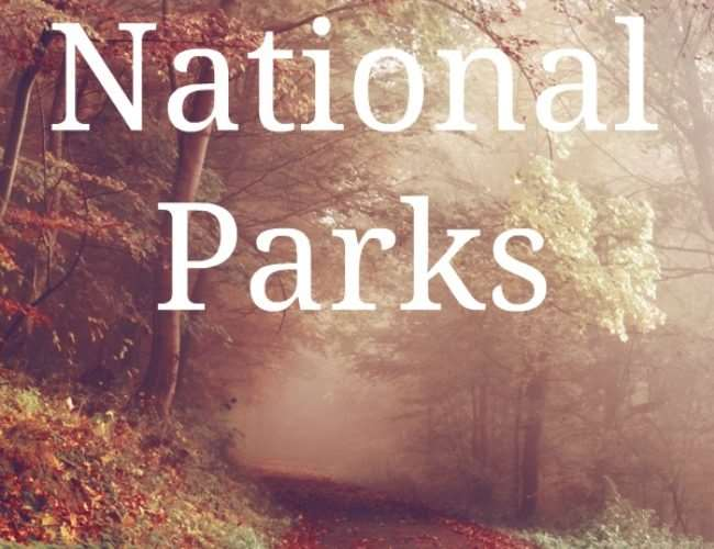 Get the 411 Before Visiting National Parks