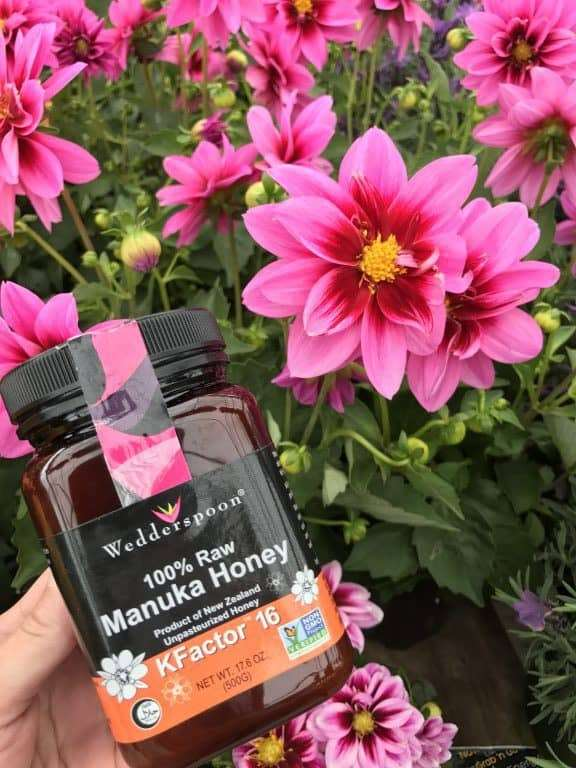 Everyday can be Earth Day - Get tips you can use at home to protect honeybees, get a printable scavenger hunt, and enter to win a jar of Wedderspoon Manuka Honey.