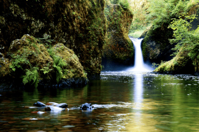 Eagle Creek Trail  - 5 of The Best Hikes in Oregon