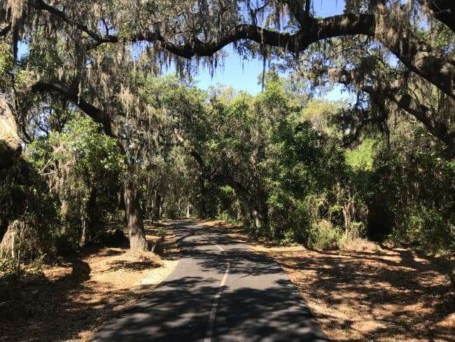 Exploring the Gulf State Park and Backcountry Trail with Coastal Segway Adventures - Enjoy Gulf Shores and Orange beach Alabama and experience family fun on this 3 Days itinerary filled with Fun Things to Do With Kids