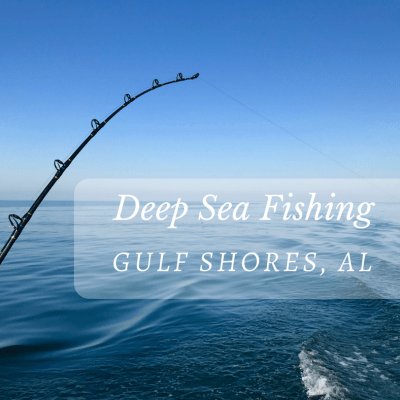 Deep Sea Fishing in Gulf Shores, Alabama