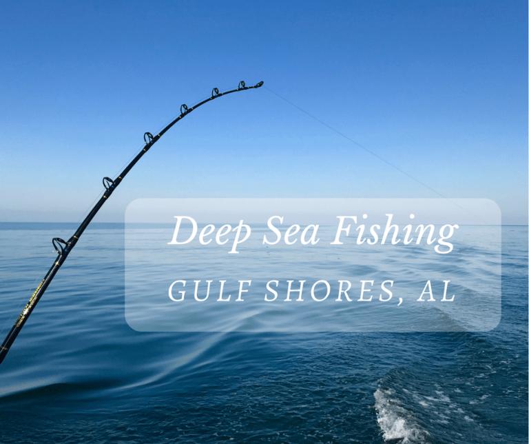 Deep sea fishing in gulf shores alabama little family for Deep sea fishing california