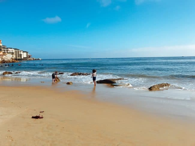 Any day at the beach is a good day - Visit one of the beaches in Cannery Row and Monterey CA