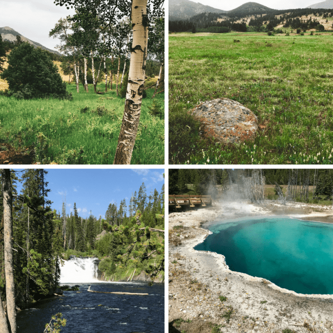 Summer Road Trip through Rocky Mountain, Grand Teton, and Yellowstone