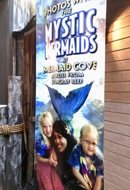 Find real life mermaids at the Downtown Aquarium in Denver, Colorado