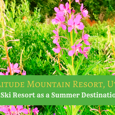 A Ski Resort as a Warm Weather Destination? – Summer at Solitude Mountain