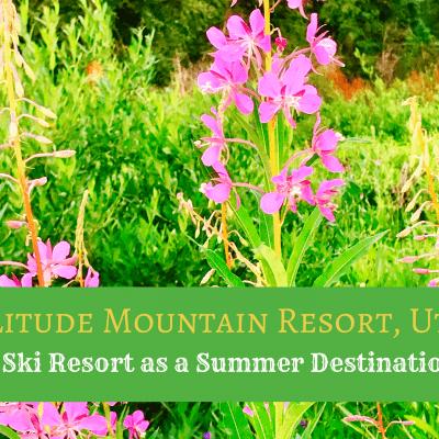 A Ski Resort as a Warm Weather Destination? – Summer at Solitude Mountain